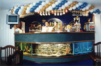 Bar in Dniprovskiy Hotel